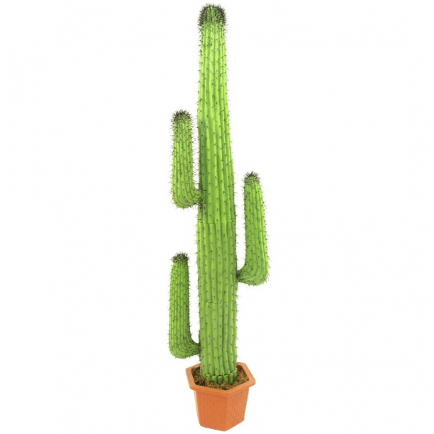 Cowboy kaktus plastik