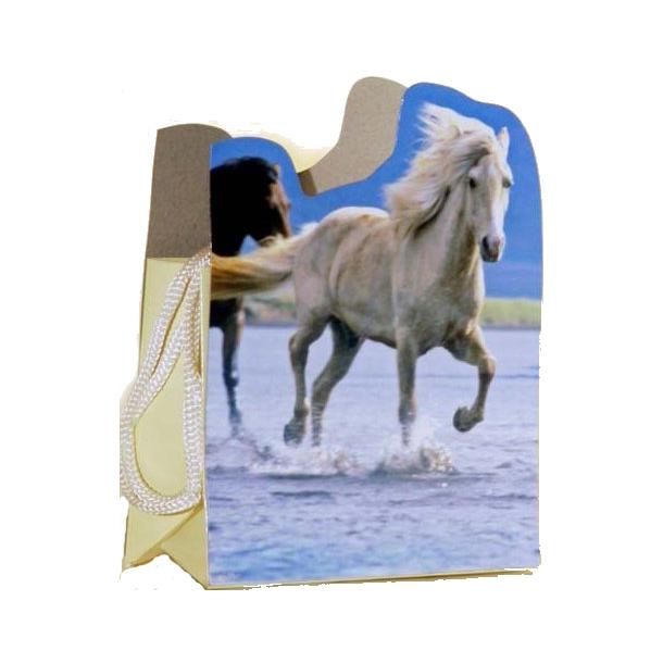 Sang Skjuler Hest